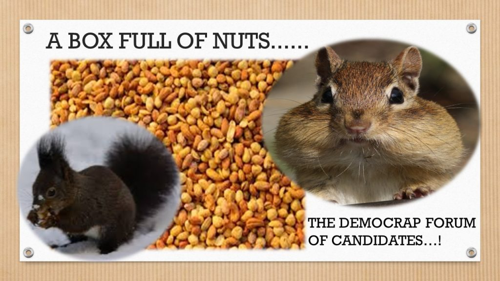 A BOX FULL OF NUTS……